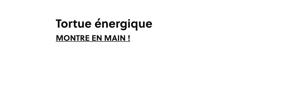 Tortue énergique - MONTRE EN MAIN !